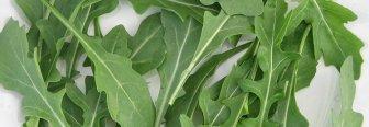 Batidos verdes con rúcula
