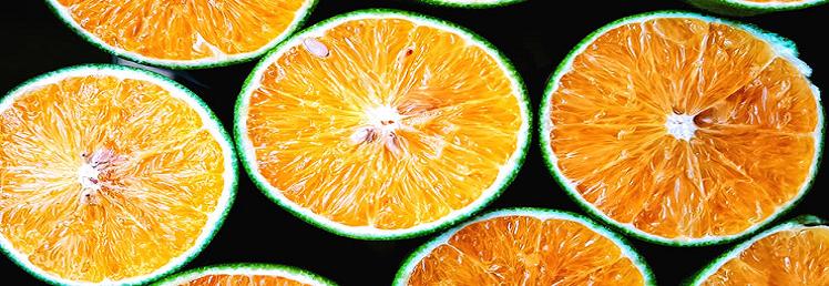 Descubre los beneficios de la sinefrina para perder peso